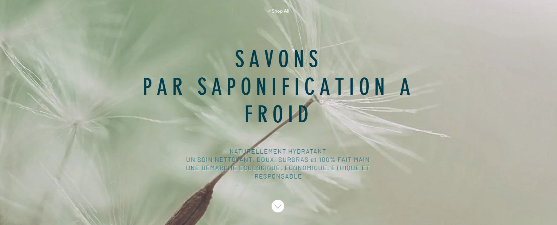 Savons_WIX.JPG